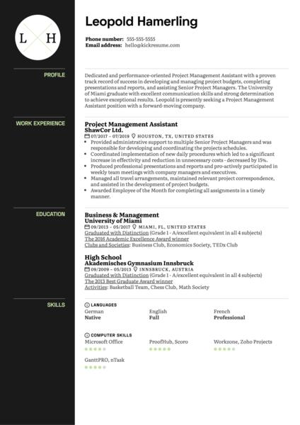 Project Management Assistant Resume Sample