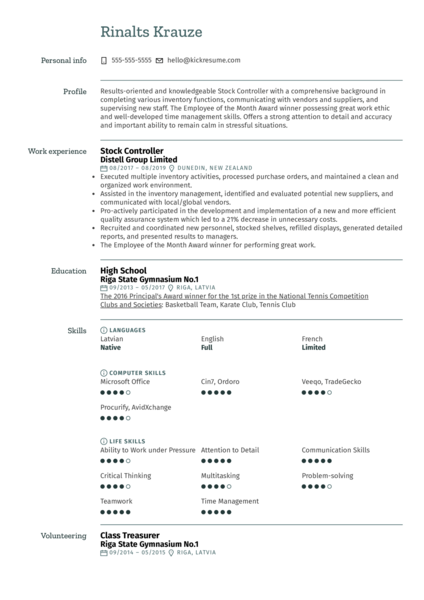 Stock Controller Resume Template