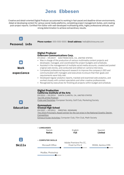 Digital Producer Resume Sample