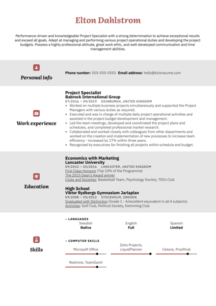 Project Specialist Resume Example