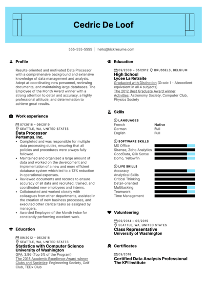 Data Processor Resume Example