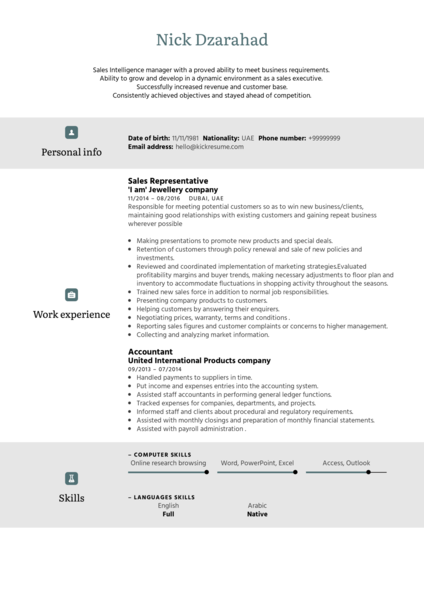 Adidas Sales Representative Resume Template