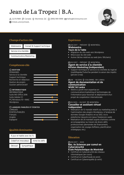 Webmaster/Webmestre resume example [French]