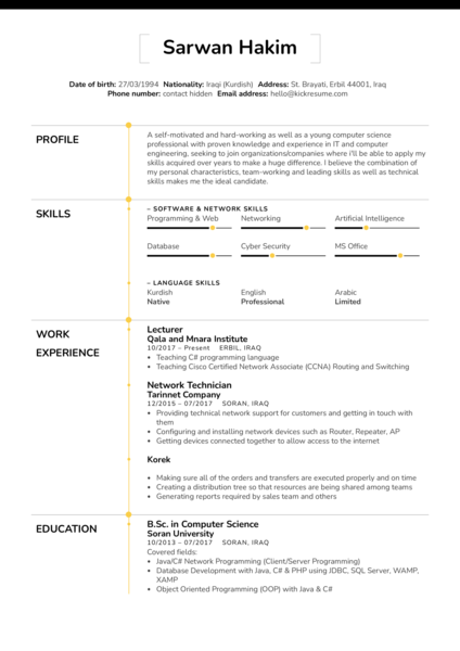 IT assistant lecturer resume template