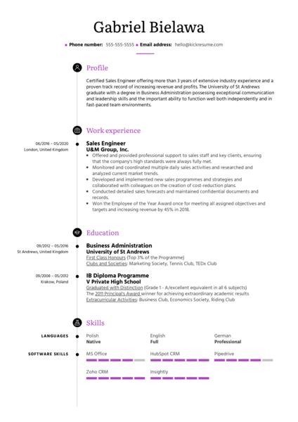 Sales Engineer Resume Example