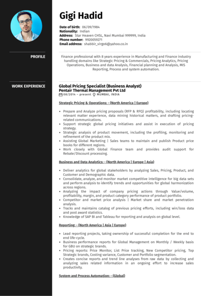 Honeywell pricing analyst resume template