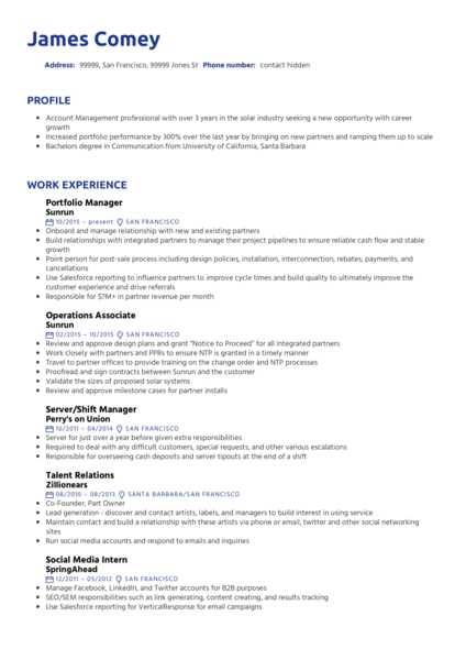 Portfolio manager resume template
