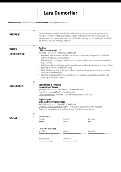 Free Auditor Resume Sample