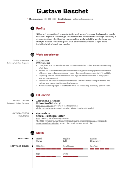 Professional Accountant Resume Sample
