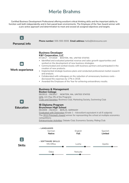 Business Developer Resume Example