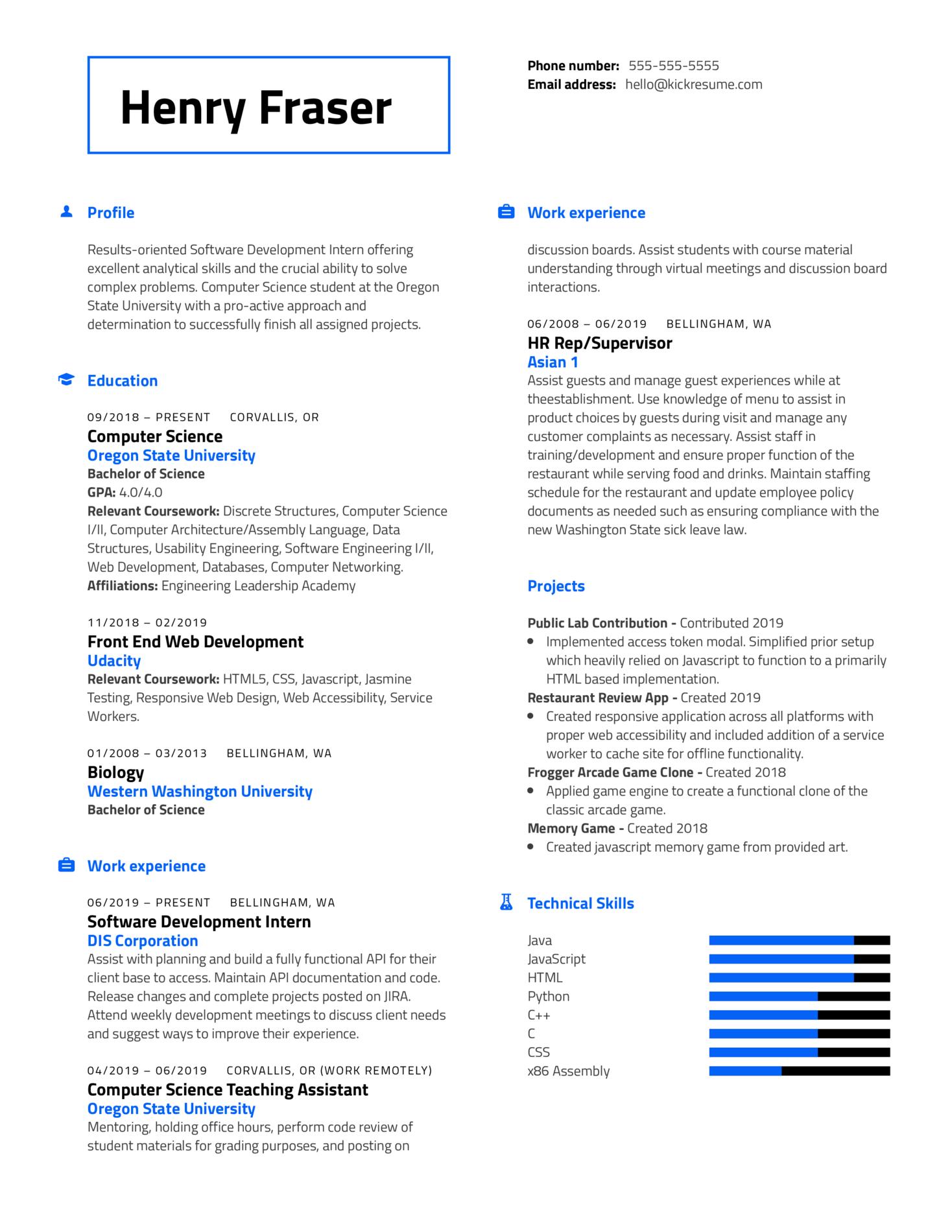 DIS Software Development Intern Resume Example