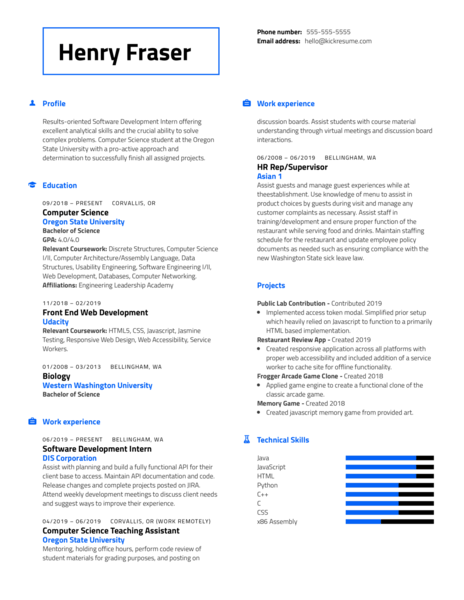 DIS Software Development Intern Resume Example