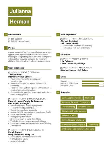 IRS Tax Examiner Resume Example