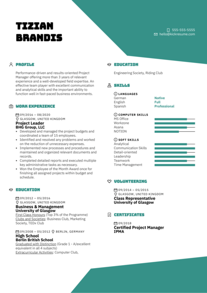 Project Leader Resume Example