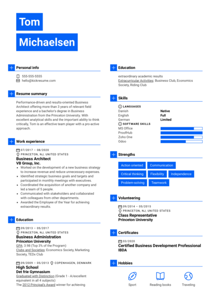 Business Architect Resume Example