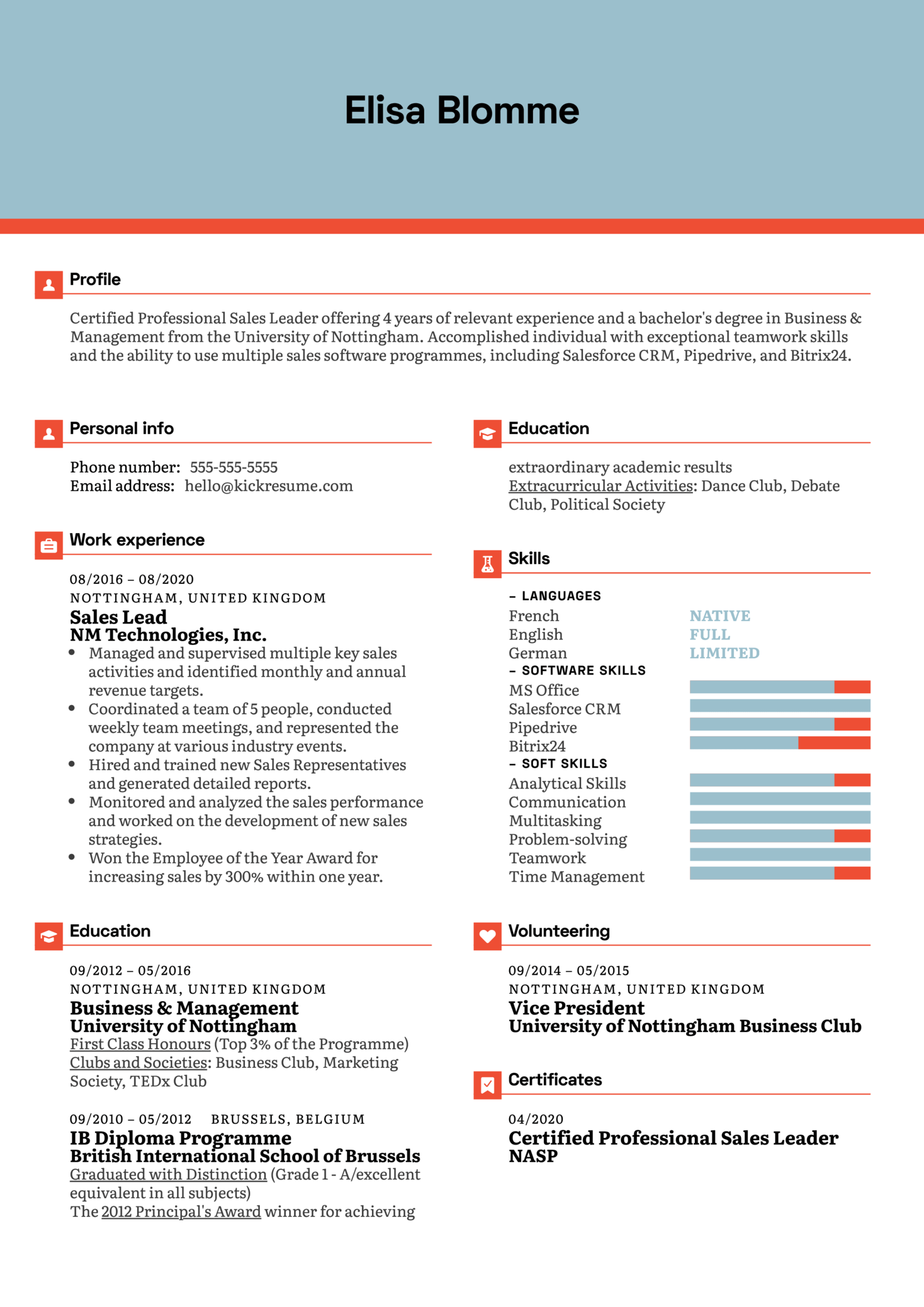 Sales Lead Resume Example