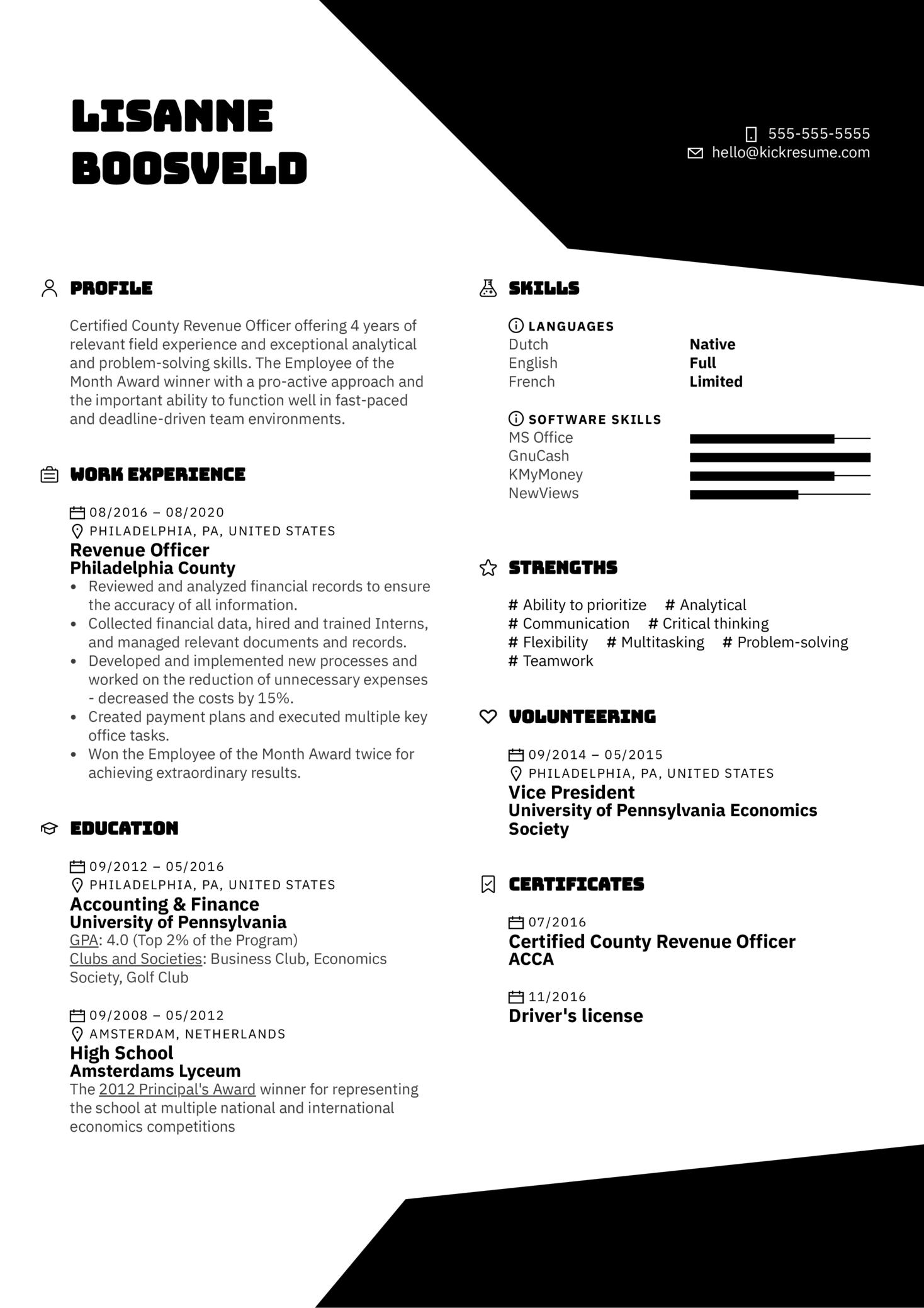 Revenue Officer Resume Example