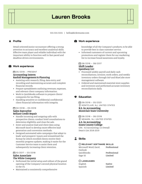 Cosmo Trading Junior Accountant Resume Example