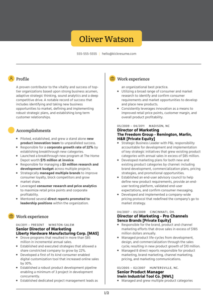 Vice President of Marketing Resume Example