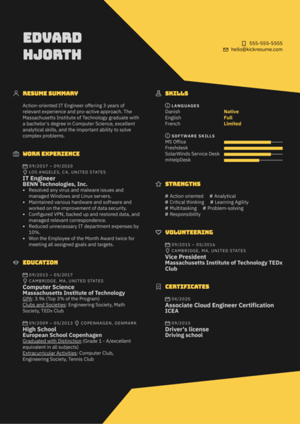 IT Engineer Resume Example