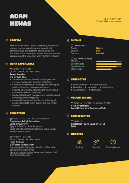 Team Leader Resume Example