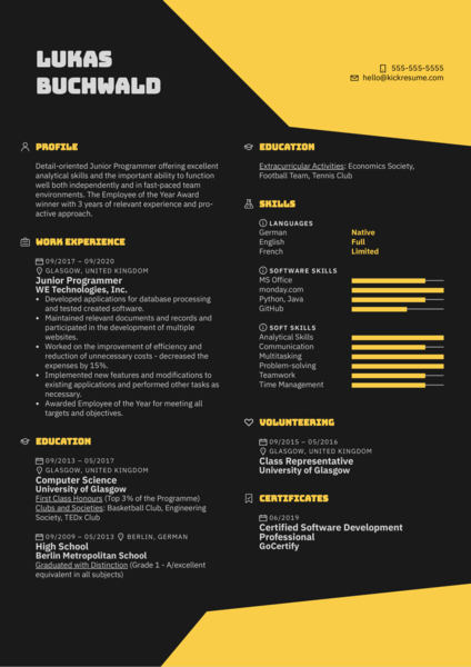 Junior Programmer Resume Example