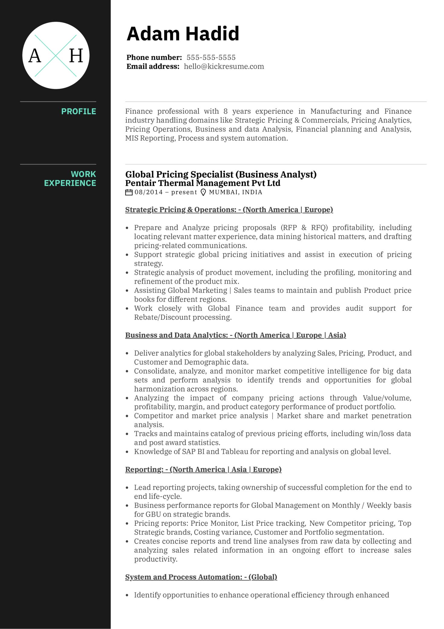 Honeywell Pricing Analyst Resume Example (Part 1)