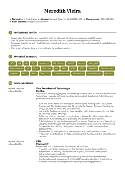Sr. Platform Architect Resume Sample