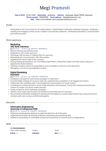 Digital marketing CV sample