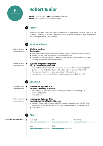 Software Engineer at Volkswagen Resume Template