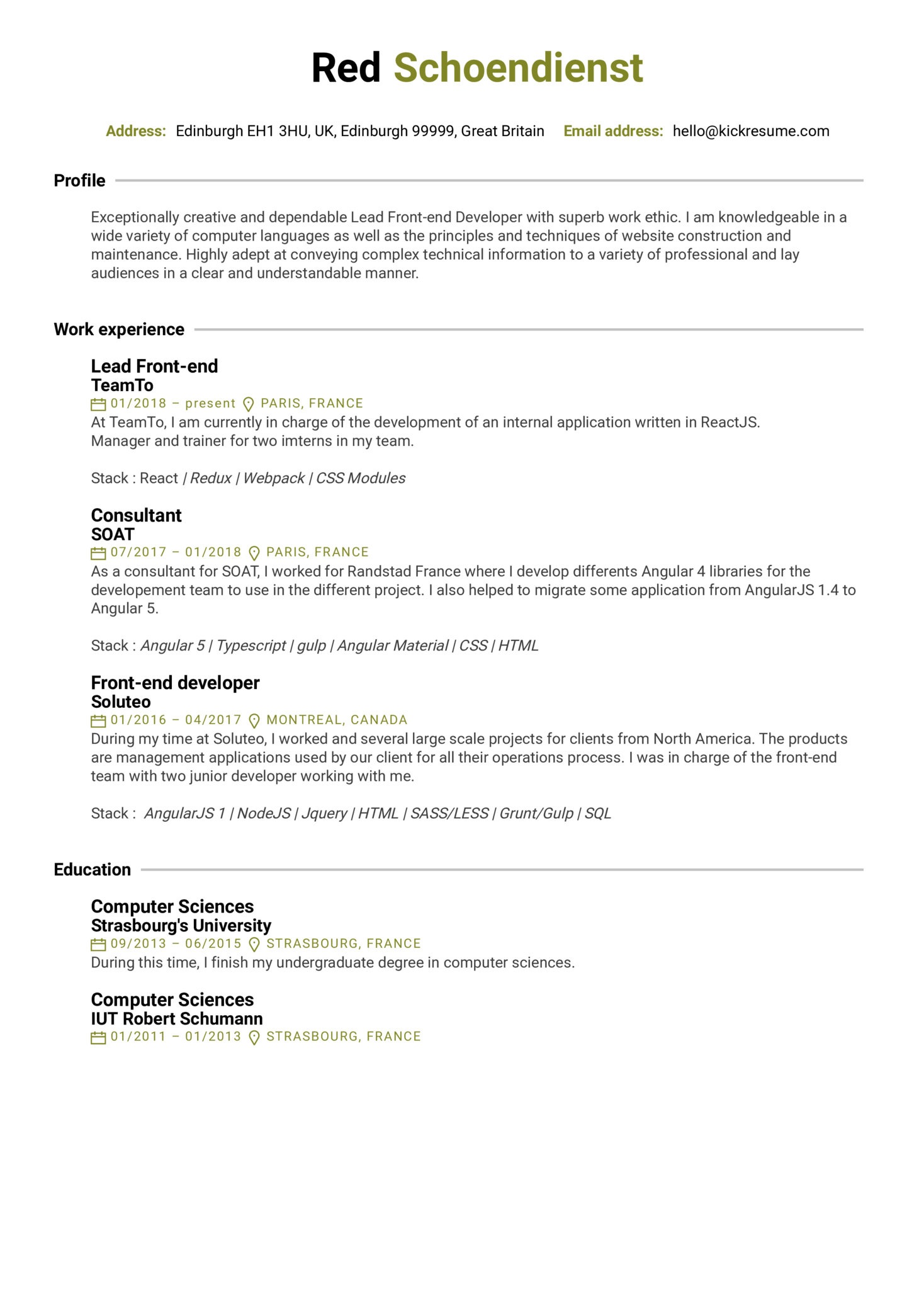 Teamto Lead Front End Developer Cv Sample Kickresume