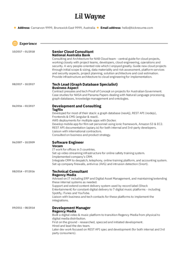 Software Engineering Resume Samples from Real Professionals ...