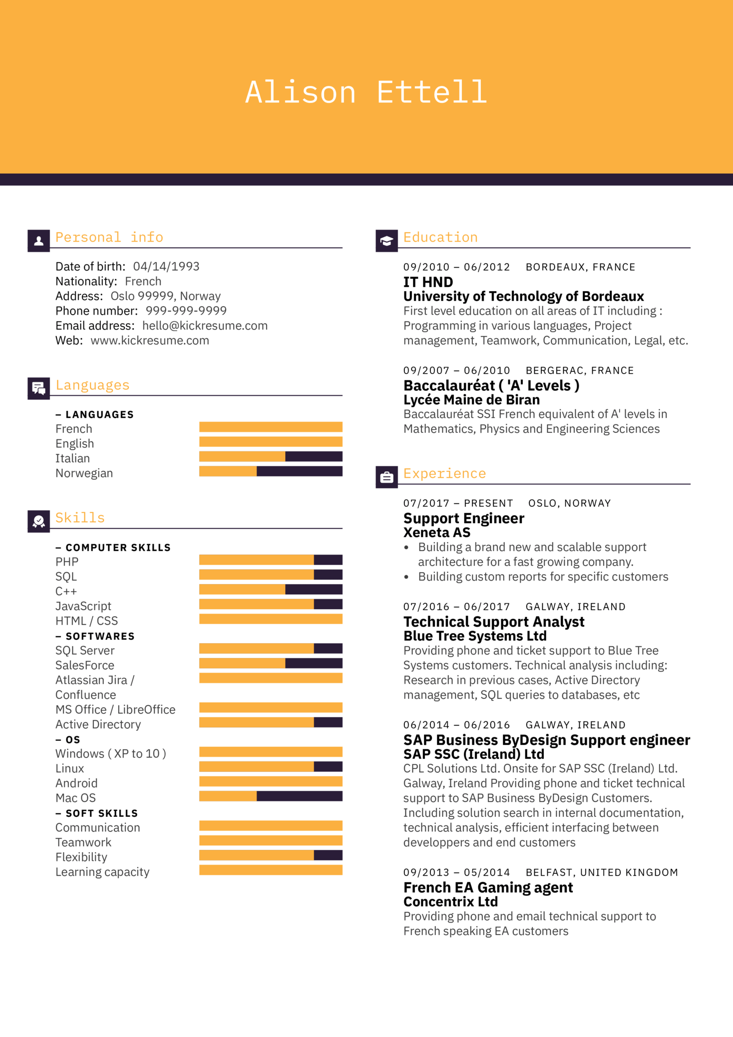 resume examples by real people  technical support engineer resume sample