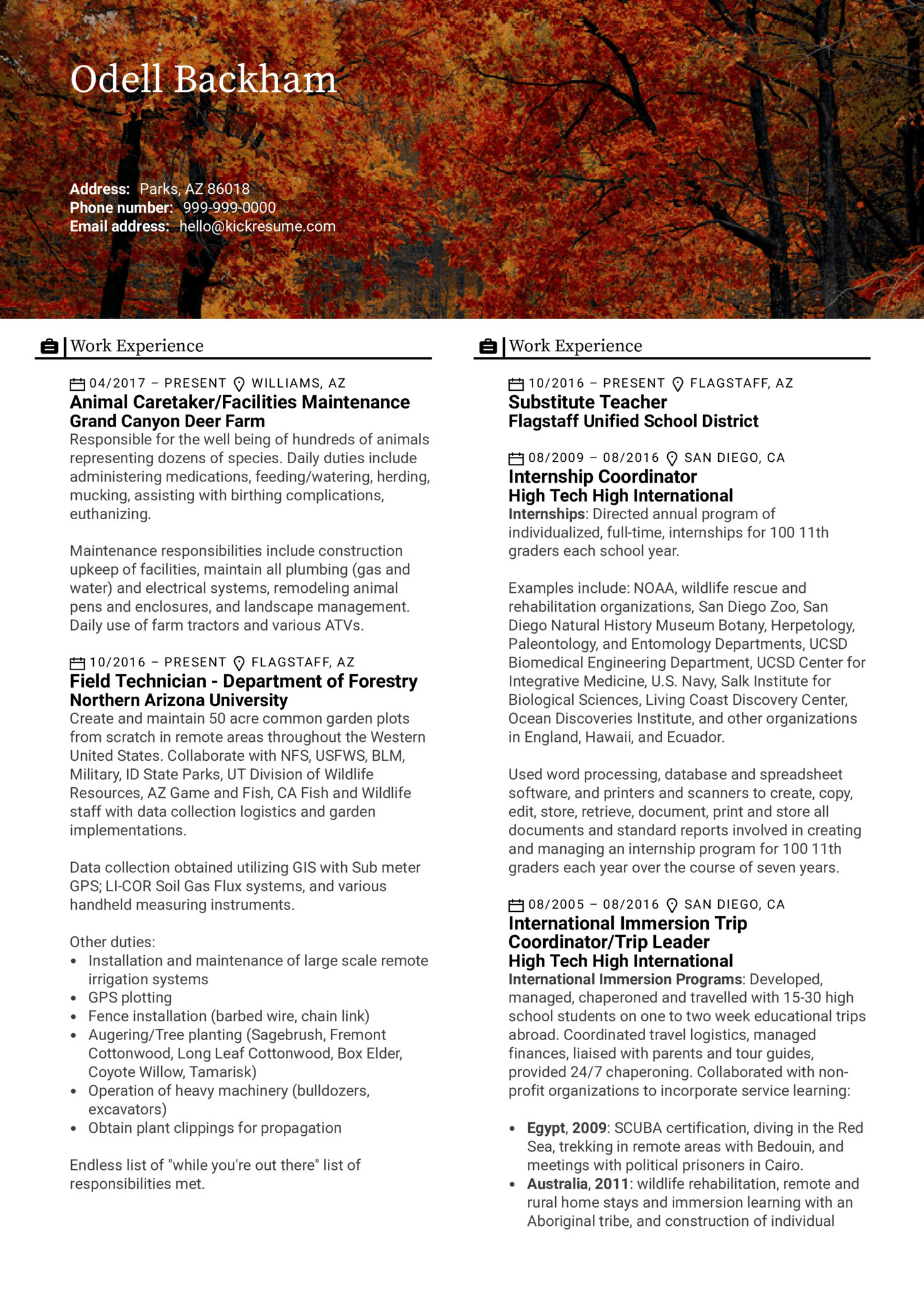 resume examples by real people  field technician resume