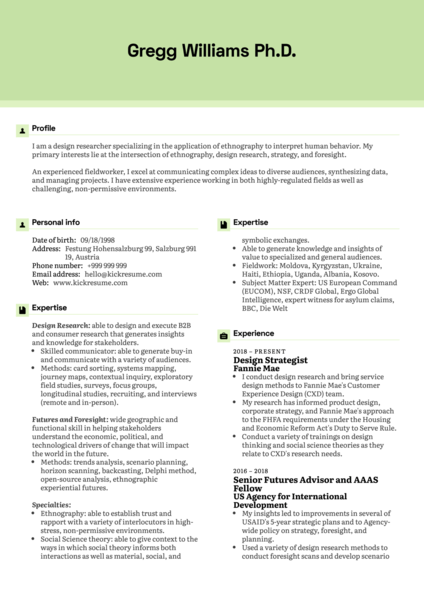 Design Strategist Resume Example