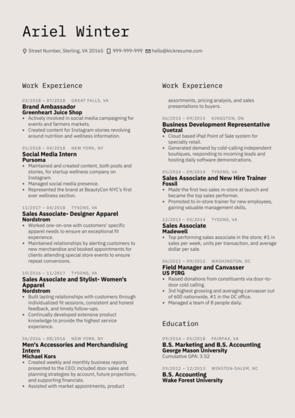 YELP Account Executive Resume Sample