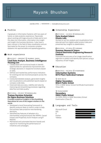Lead Data Analyst Resume Example
