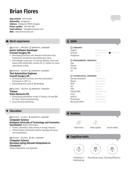 Junior Software Developer CV Sample