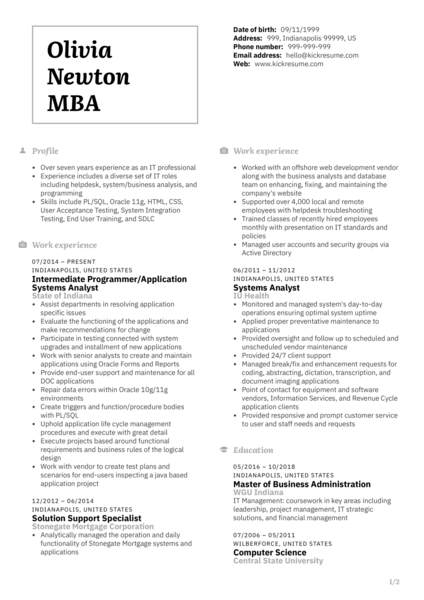 Senior Systems Analyst CV Sample