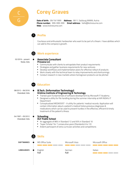 Junior Business Analyst Resume Example