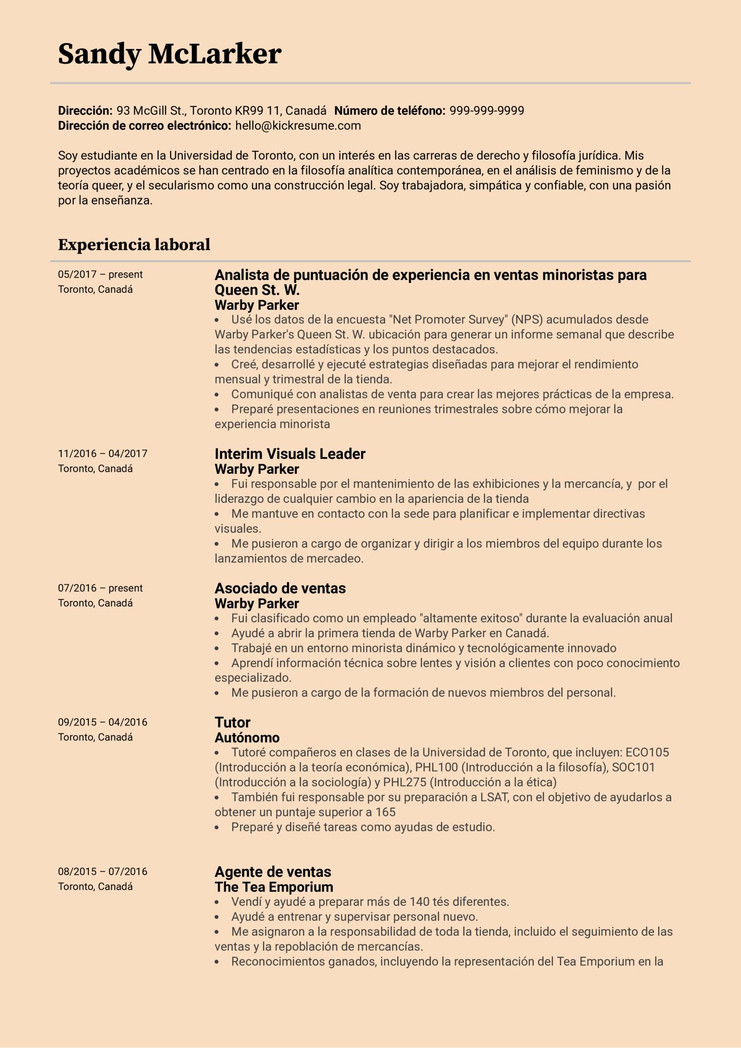 Analista con experiencia en minorista currículum ejemplo [ES] (Parte 1)