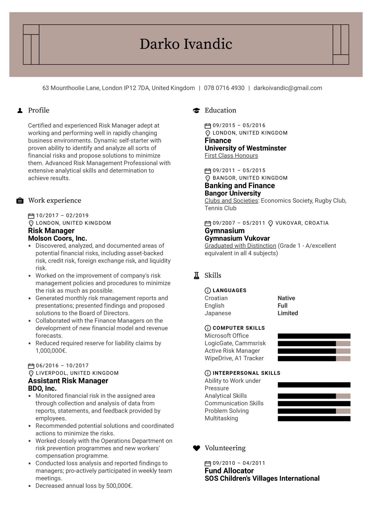 Risk Manager Resume Example