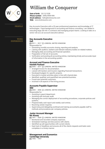 Executive Account Manager Resume Sample