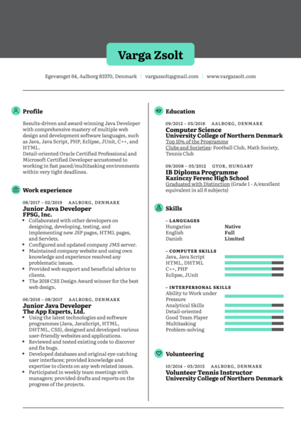 startup resume samples from real professionals who got