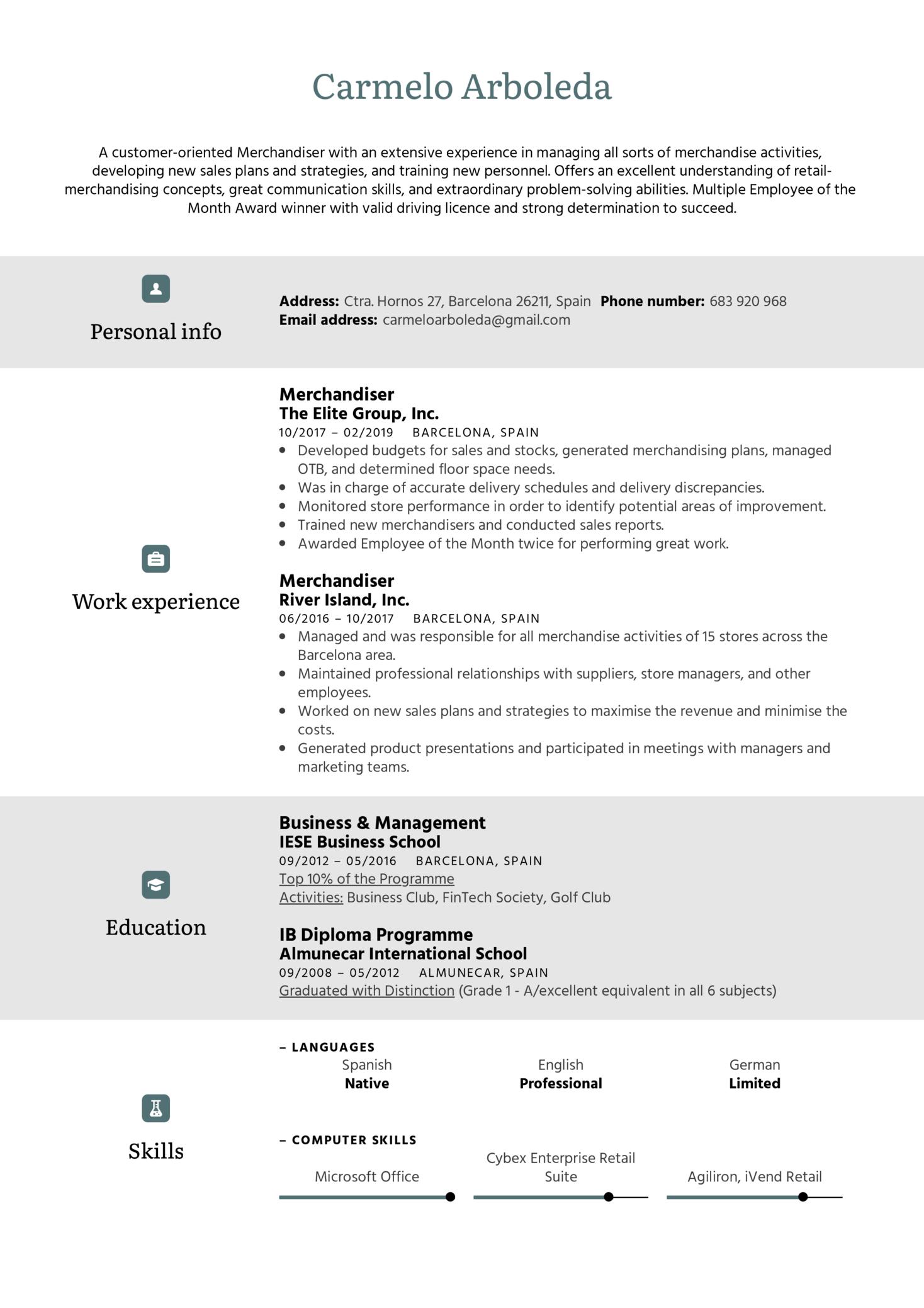 Merchandiser Resume Sample