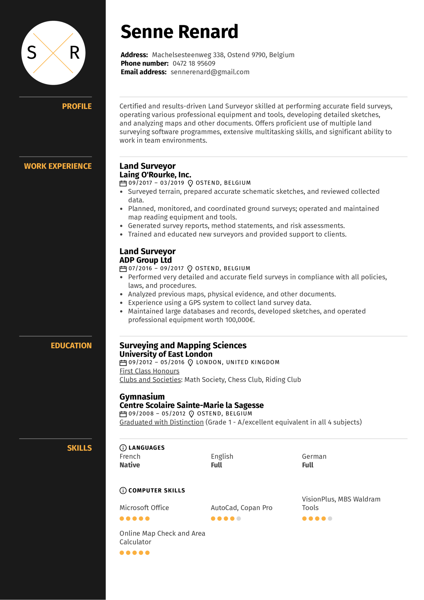 Land Surveyor Resume Sample