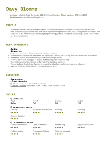 Janitor Resume Example