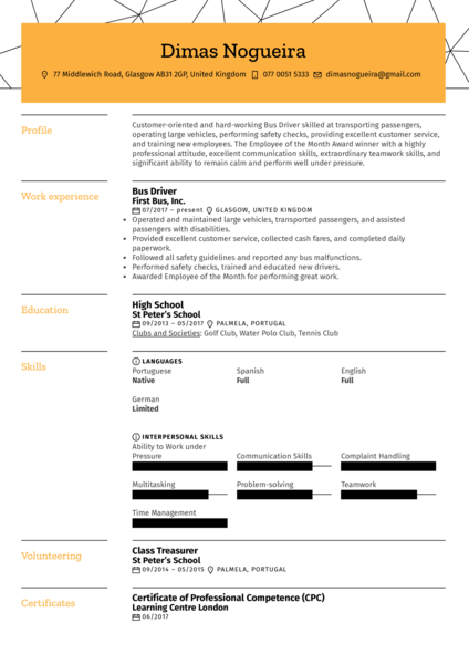 Bus Driver Resume Sample