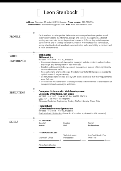 Webmaster Resume Example