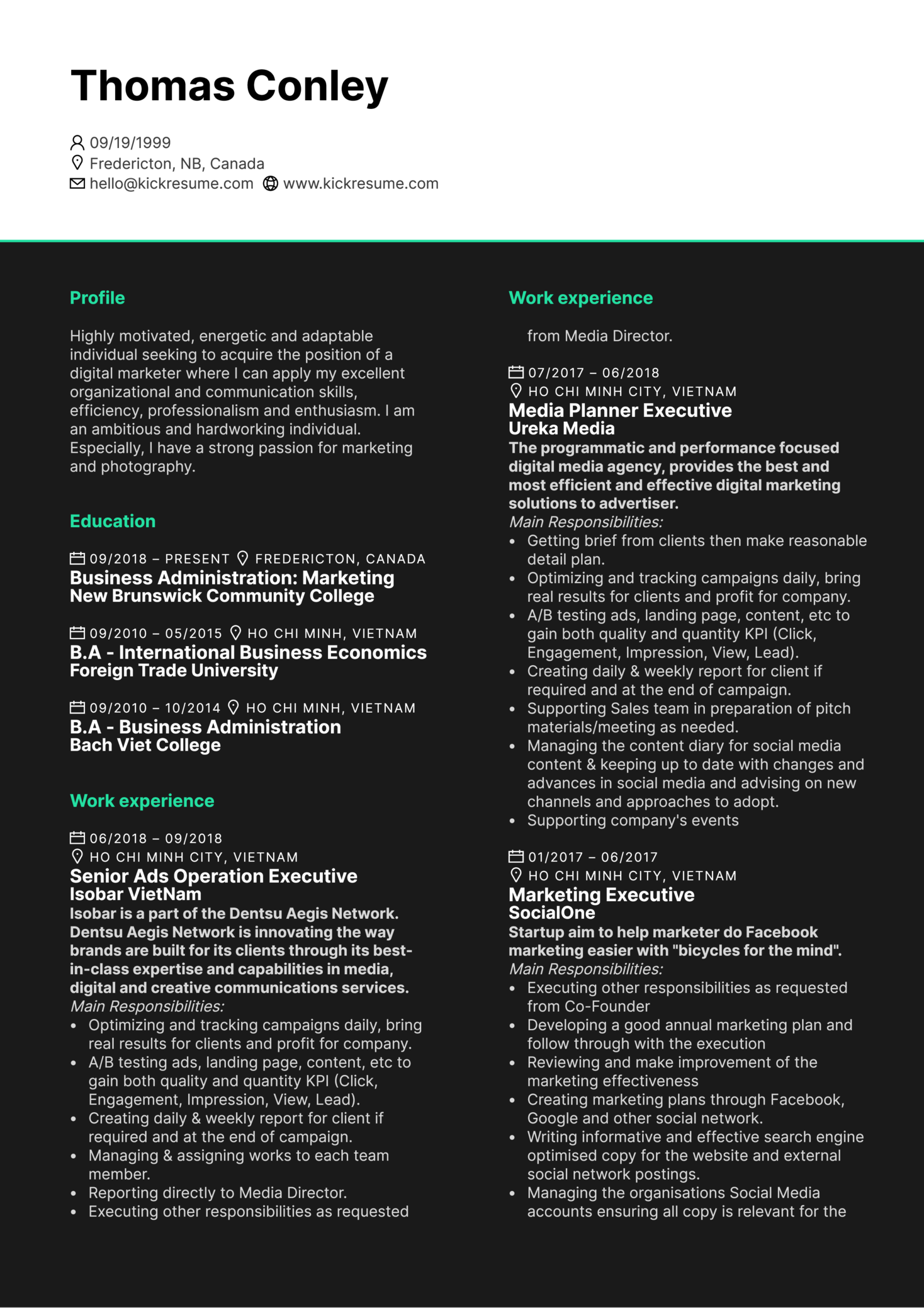 Senior Media Executive CV Example